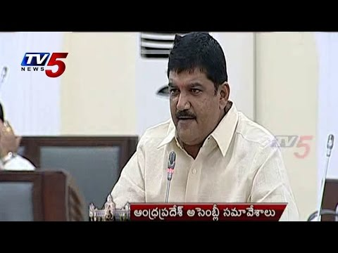 Dulipalla On Opposition Scams In Assembly : TV5 News