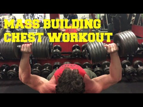 Mass Building Chest Workout by Warrior Soul Apparel