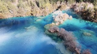 Jiuzhaigou China  City pictures : 【Live China】The Magnificent Scenery of Jiuzhaigou Valley National Park
