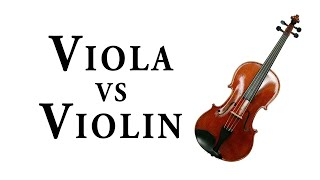 VIOLA vs. VIOLIN Video
