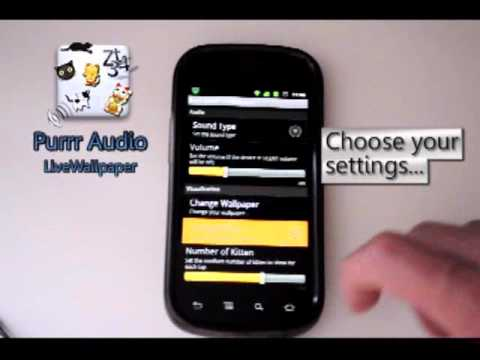 Video of Purrr Audio LiveWallpaper LITE