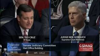 Sen Cruz Calls Out Democrats On Double Standard They've Created For Gorsuch
