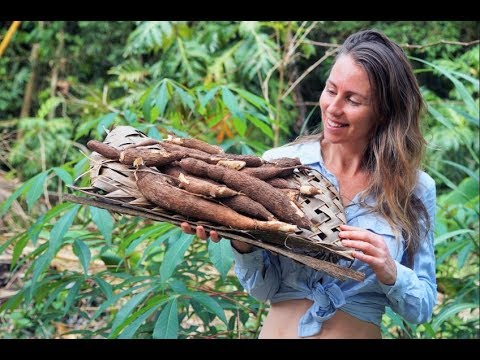 Offgrid Homegrown Food: YUCA / CASSAVA Harvest, From Growing To Cooking