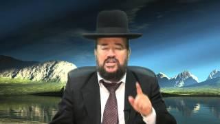 פרשת פינחס – אל תהיו כסוס