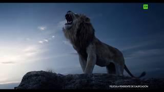 El Rey León - V.O.S.