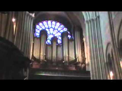Notre Dame Cathedral Organ Playing in Paris, France
