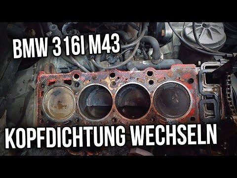 BMW E36 | 316i 318i | M43 -  Kopfdichtung wechseln