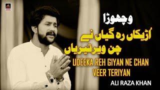 Vichora - Udeeka Reh Giyan Ne Chan Veer Teriyan - Ali Raza Khan - 2019   Noha Bibi Sughra S.a