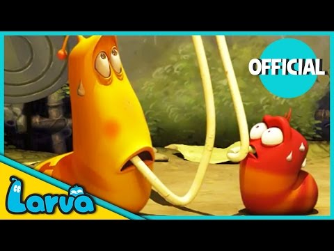 LARVA Funny Animation | LARVA AND THE SPAGHETTI | Cartoons | Comics | LARVA Official
