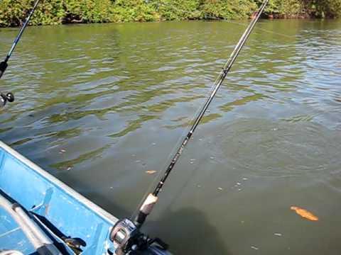 Pescaria Rio Culuene.