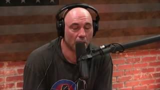 Video Joe Rogan on Addiction & Wasting Your Life MP3, 3GP, MP4, WEBM, AVI, FLV Mei 2019