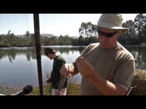 Carp Fishing em Lagoa de Alvarães
