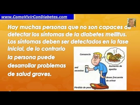 fisiopatologia de la diabetes mellitus - Videos | Videos
