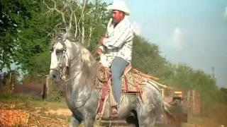 video y letra de Palo verde (audio) por German Lizárraga y su banda estrellas de Sinaloa