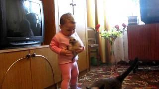 誘拐犯 vs 親猫