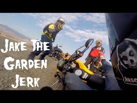 Ruining a Stunt Rider's Career