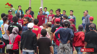 Video SAMPAI BOCOR....TAWURAN DANGDUT NEW PALLAPA LIVE  PENGILON COMMUNITY. MP3, 3GP, MP4, WEBM, AVI, FLV Juli 2018