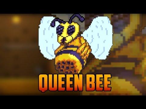 Terraria-Убийство Королевы Пчелы Терра Мечом! - Смотреть онлайн самые популярные топ видео YouTube - Youtube Search RU