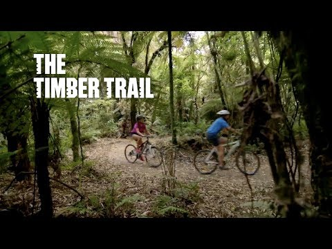 Timber Trail courtesy of 100% Pure New Zealand