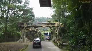 Bogor Indonesia  City new picture : Wisata TAMAN SAFARI INDONESIA Cisarua Bogor @16-5- 2015 - Trip 1 Safari Park by.ETARIN
