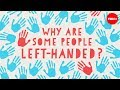 Why are some people left-handed? - Daniel M. Abrams