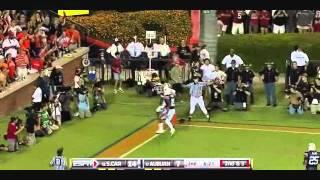 Alshon Jeffery vs Auburn