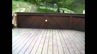 Funny DOG Has the Best Day Ever 2014
