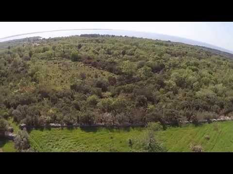🔵    FOR SALE OLIVE GROVE WITH OLD & YOUNG OLIVES 3920 M2