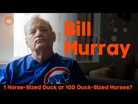 Video: Reddit asks Bill Murray