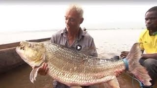 14 Most Difficult Fish To Catch by Epic Wildlife
