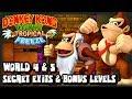 Donkey Kong Country Tropical Freeze Wii U - (1080p) Secret Exits, Bonus Levels, & K Stages - World 4 & 5