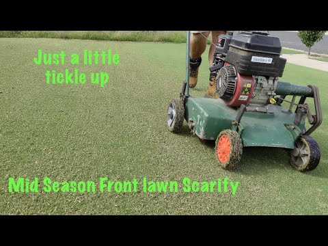 Mini lawn renovation for couch / bermuda grass (Mid summer) Part 1 of 2
