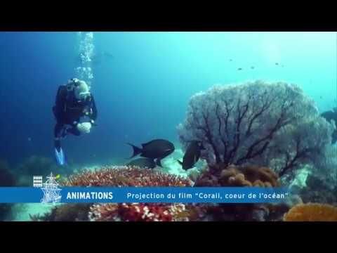 Projection du film, Corail, coeur de l'océan