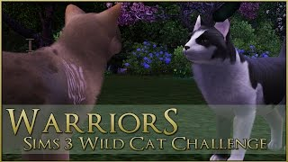 Nonton The Branch In The Crow S Path      Warrior Cats Sims 3 Legacy   Episode  69 Film Subtitle Indonesia Streaming Movie Download