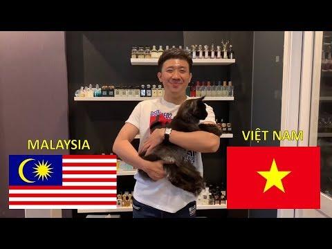 Cùng Trấn Thành, Trấn Xì, và Elsa dự đoán kết quả Việt Nam - Malaysia (15/12/2018) AFF cup - Thời lượng: 1:44.