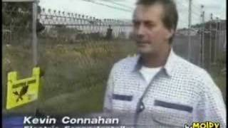 Video Reporter Touches a 6000 volt Fence MP3, 3GP, MP4, WEBM, AVI, FLV Mei 2017