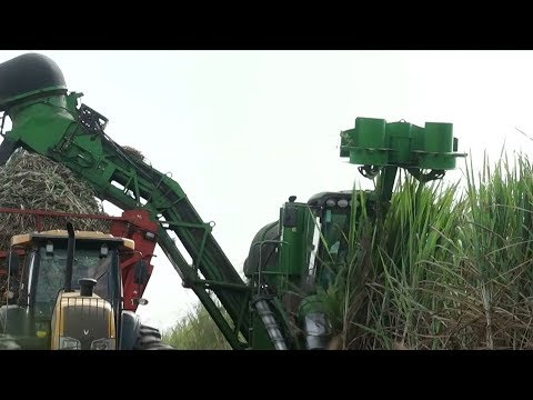 Higher oil prices a boon for Brazil's ethanol industry