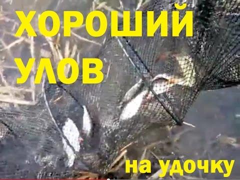 диалоги о рыбалке слушать