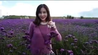 Nonton Aom Say Thank You To Malaysia Fans   Haunted Hotel  Haunted Road 2  24oct17 Film Subtitle Indonesia Streaming Movie Download