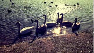 Video Marek CHyba- (no name- prva cover)
