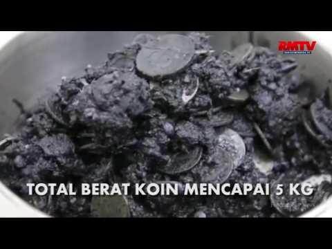 Telan 915 Koin, Seekor Penyu Langka Dioperasi