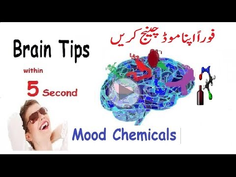Quickly Change Mood with Brain chemicals in hindi - urdu