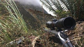 Video Hunting Chamois & Tahr (Film 1) | South Westland, New Zealand MP3, 3GP, MP4, WEBM, AVI, FLV Maret 2019