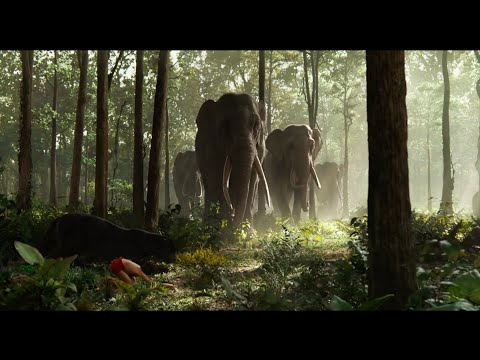 The Jungle Book (Clip 'Show Them Respect')