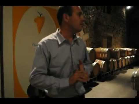gilette - Xavier Gonet-Medeville, co-owner and co-winemaker at Chateau Gilette in Sauternes, Bordeaux, France, explains the winemaking process and shows us around the ...