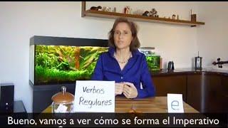 "You can buy the software to practice:""Practiquemos más"" ➤ http://www.practiquemos.com/espanol¡SUSCRÍBETE! [please subscribe]: http://goo.gl/dP6qzBPAGINA WEB [webpage]: http://www.practiquemos.com""Practiquemos mas"" [software to practice]: http://www.practiquemos.com/espanolNEWSLETTER: http://www.practiquemos.com/newsfacebook: http://www.facebook.com/PRACTIQUEMOSGoogle+: http://google.com/+PractiquemosEspanolTwitter: @practiquemosIMPERATIVO INFORMAL (TÚ) - PARTE IVerbos:hablar ➤ hablacomprar ➤ compramirar ➤ miragirar ➤ giratomar ➤ tomaentrar ➤ entraregresar ➤ regresacaminar ➤ caminaesperar ➤ esperacomer ➤ comeleer ➤ leevender ➤ vendecreer ➤ creecorrer ➤ correromper ➤ rompeabrir ➤ abreescribir ➤ escribeconducir ➤ conducepermitir ➤ permitediscutir ➤ discuteVocabulario:tijeras, pan, leche, café, foto, derecha, frutas, verduras, libro, interesante, bicicleta, ventana, nombre, aquí, por favor, despacio."