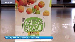 Alimentos que seriam desperdiçados sustentam famílias carentes