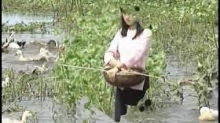 Buon Ma Chi Em - Che Linh