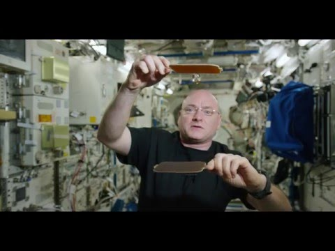 NASA Astronaut Scott Kelly Plays Ping Pong With a Floating Ball of Water on the International Space
