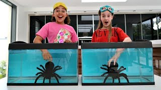 Video WHAT'S IN THE BOX CHALLENGE - UNDERWATER | Toys AndMe MP3, 3GP, MP4, WEBM, AVI, FLV Juli 2018